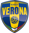 Logo BluVolley Verona